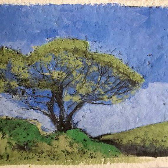 Tree 4: