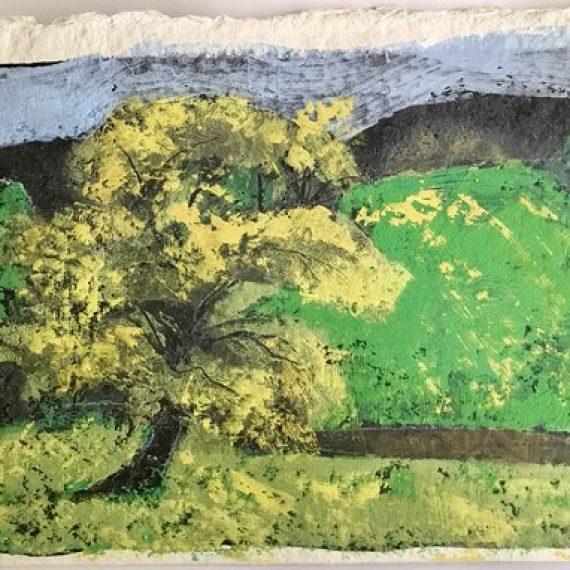 Tree 6: