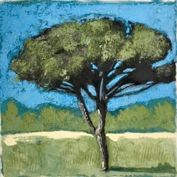 Roman Pine: