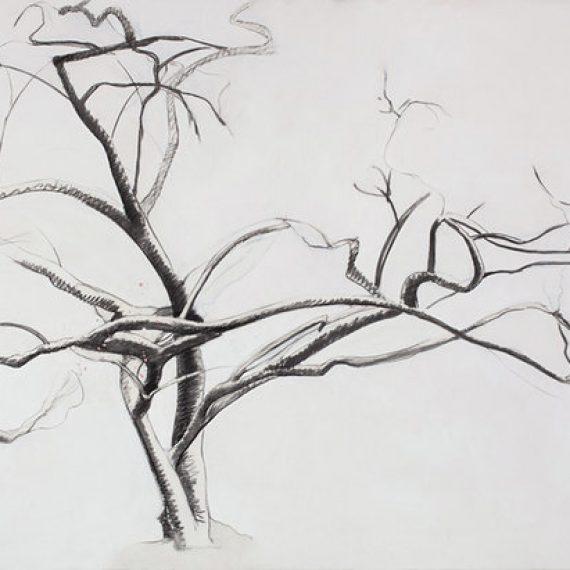 Spring Tree: